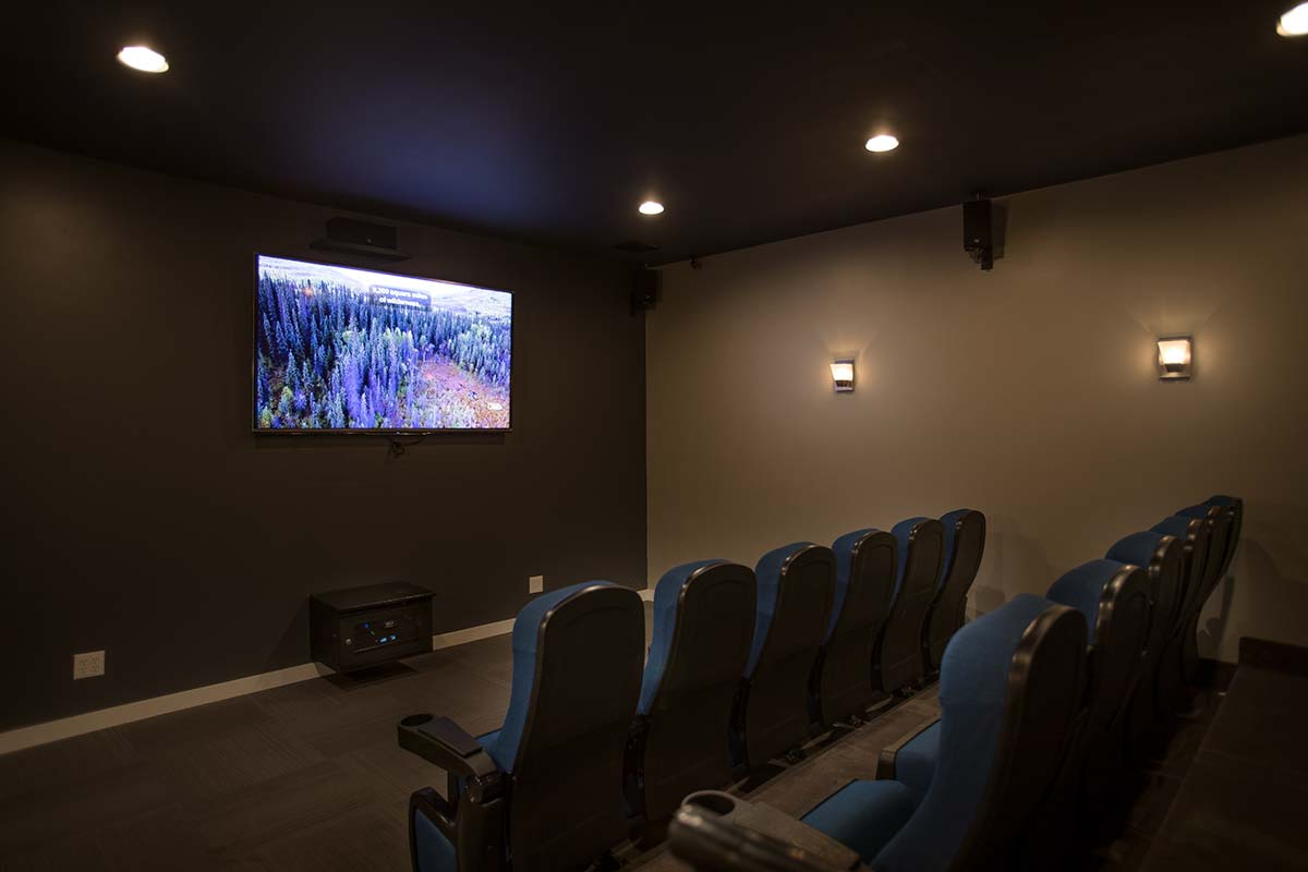 theatre room with flat screen tv